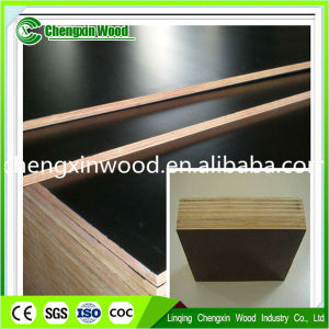 Construction Used and High Quality Plywood for Furniture pictures & photos