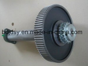 Gear Shaft CPL. Use for Sluice Gate pictures & photos