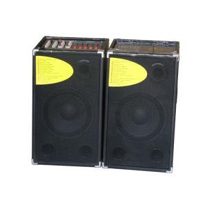 Professional 2.0 Avtive Speaker /Stage Speaker (T-10)