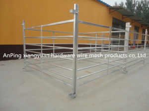 High Quality Galvanized Metal Rails Sheep Panels pictures & photos