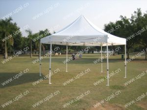 Gazebo/Canopy pictures & photos