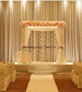 Classical High Quality Chiffon for Wedding Drape, Banquet Drape, Backdrop pictures & photos