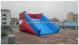 Top Quality Inflatable Zorb Slide with Customized Label