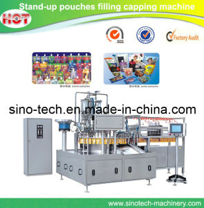 Automatic Standing Spout Pouch Filling Capping Machine pictures & photos