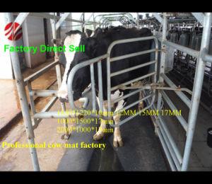 1830*1220 mm Cow Bed Rubber Mat, Stable Rubber Mat