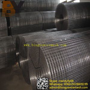 Concrete Black Welded Wire Mesh pictures & photos