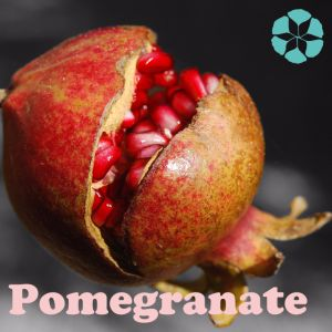 Pomegranate Extract / Punica Granatum Extract / Polyphenols / Ellagic Acid