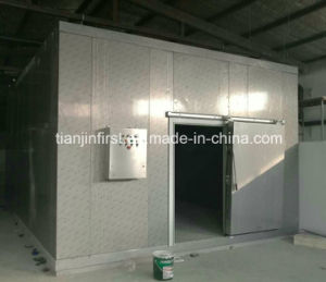 Blast Freezer Cold Room / Industrial Deep Freezer Cold Room for Fish pictures & photos