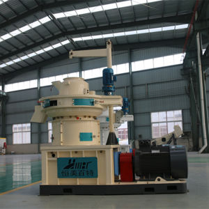 1.2t Ring Die Vertical Dobule Sizes Grass Wood Sawdust Alfalfa Bamboo Pellet Press Plant Price pictures & photos