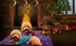 Christmas Design Floor Mat Pet Mat Carpet pictures & photos