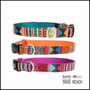 Strong Durable Fashion Woven Nylon Pet Dog Collar pictures & photos