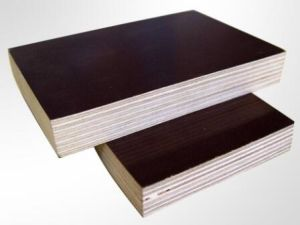Film Faced Eucalyptus/Hardwoods Combi Plywood for Building pictures & photos