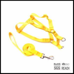 Solid Nylon Adjustable Pet Dog Walking Harness and Leash Set pictures & photos
