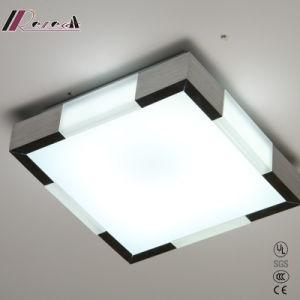 Acrylic Square Fluorescent Ceiling Light Aluminum Ceiling Light pictures & photos