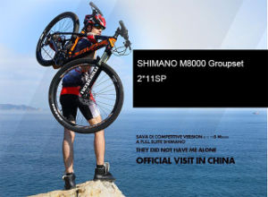 Chinese Carbon Frame MTB 27 5 pictures & photos