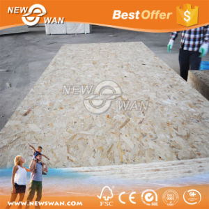 10mm OSB Board / 12mm OSB Panel pictures & photos