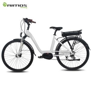 700c MID Drive Electric Bicycle with Rear Rack Battery pictures & photos