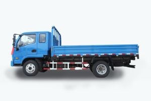 Mudan 300 Space Cabin Truck pictures & photos