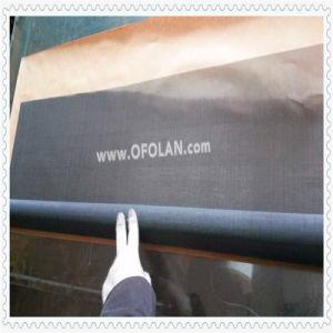 100 Mesh Titainum Filter Mesh Factory Direct Sale pictures & photos