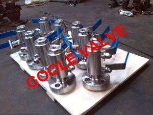Flang, Fnpt Dbb Ball Valve (GADBB4111F) pictures & photos