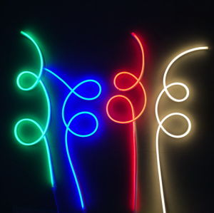 LED Neon Flex-High Brightness (WD220-F2W-2835-120L-NFL) pictures & photos