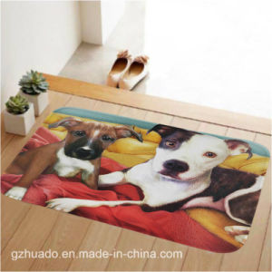 79*49cm New Pastoral Style Home Carpet Multiple Color Floor Carpets Rugs for Bedroom Bathroom pictures & photos