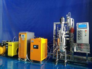 20 Liters Stainless Steel Fermenter