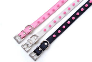 Quality Spike Plain PU Leather Dog Collars and Leashes pictures & photos
