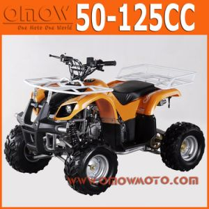 China 50cc - 110cc Mini Quad Wholesale pictures & photos