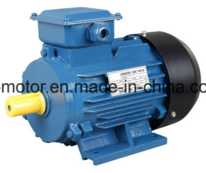 Yc Single Electric Motor 220V 5HP pictures & photos