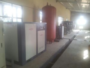 Screw Air Compressor/Rotary Screw Air Compressor pictures & photos