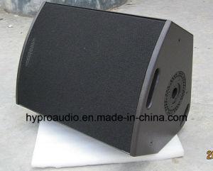 12XT Stage Speaker/Outdoor Speaker/Monitor Speaker pictures & photos