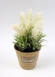 Lavender in Paper Pot with Label pictures & photos