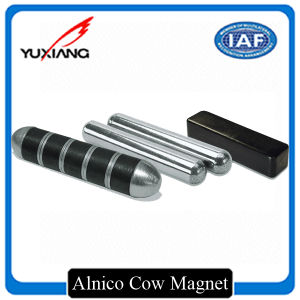 Chinese Strong AlNiCo Cow Magnet pictures & photos
