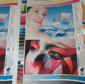 Straight Flexographic Printing Machine pictures & photos