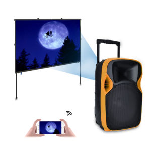 Good Quality 12 Inches PA System Speaker Box with Projector pictures & photos