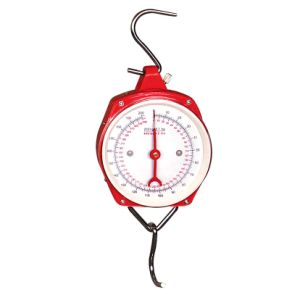 100kg Weighing Measuring Hanging Scale pictures & photos