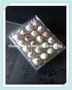 6/8/9/12/15/20 Holes Plastic Egg Box with Quail Egg Trays pictures & photos