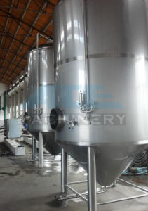 Stainless Steel Fermentation Tank/Fermentor for Red Wine Production (ACE-FJG-8J) pictures & photos