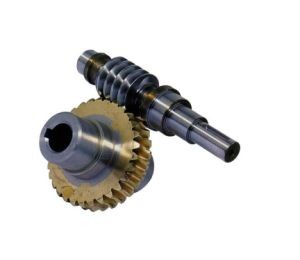 Directry Factory Custom Made Steel Worm Gear Shaft and Gears for Gearbox