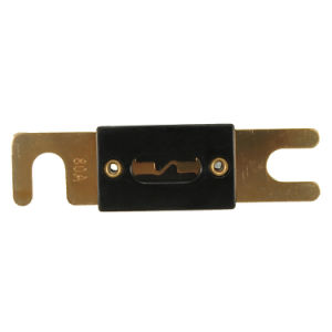 Car Stereo Audio Anl Fuse Gold Plated 80A 100A 150A 200A 300A 350A 400A 500A pictures & photos