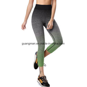 Hotsale Women Yoga Gym Sports Workout Leggings Running Fitness pictures & photos
