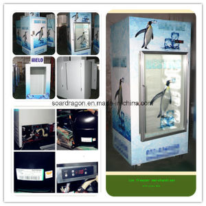 Ice Merchandiser with Single Glass Door pictures & photos