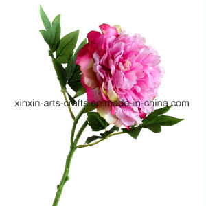 Factory Wholesale Single Stem Fake Peony Artificial Flowers with 2sets of Leaves