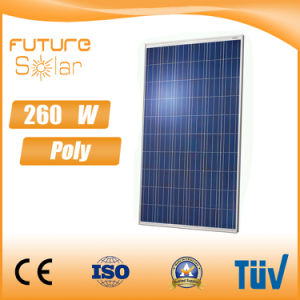 Futuresolar 260 W Poly Solar Panel with High Efficiency 10 Years Warranty pictures & photos