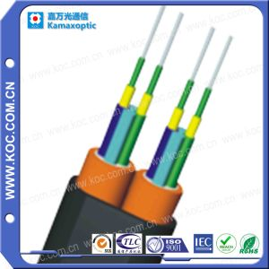4-Fiber Parallel Far Transmission Fiber Optic Cable pictures & photos