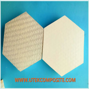 PP Honeycomb Core for Van Side Wall pictures & photos