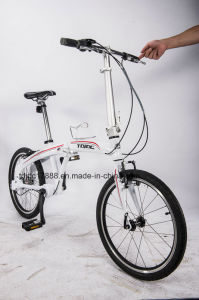 Ladies City Folding Bike Mini Leisure Bike/Bicycle pictures & photos