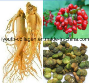Ginseng, Top 100%Natural Active Ginseng Seeds Tea, Anticancer, Prevention and Treatment Kidney, Eliminating Free Radicals, Prolong Life, Health Food pictures & photos