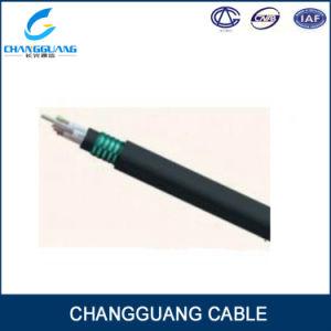 Gjfzy53-Fr Fire Resistant Cable 48 Core Fiber Optic Cable